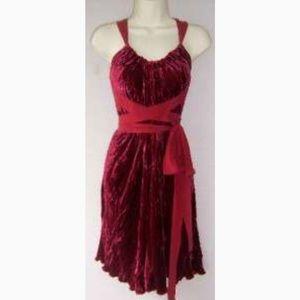 BCBG MaxAzria velvet slip dress
